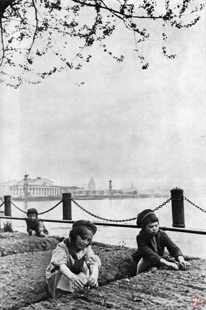 Дети блокадного Ленинграда у грядок на Мытнинской набережной
