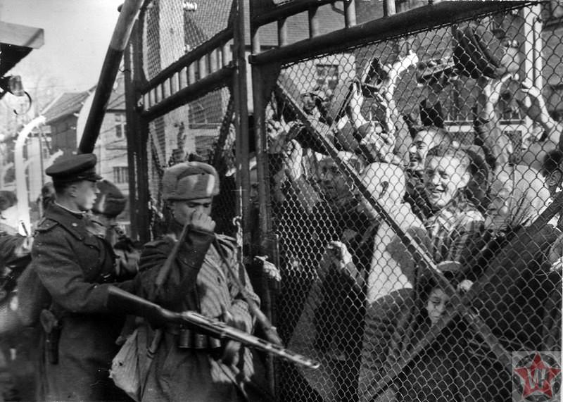 Освобождение Освенцима 27 января 1945 года