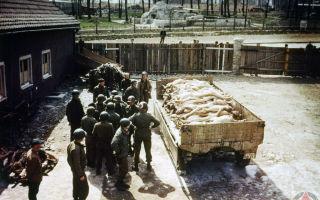 Концлагеря фашистской Германии во Второй мировой войне
