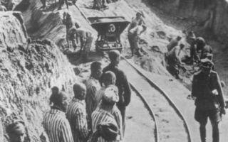 Маутхаузен: история австрийского концлагеря