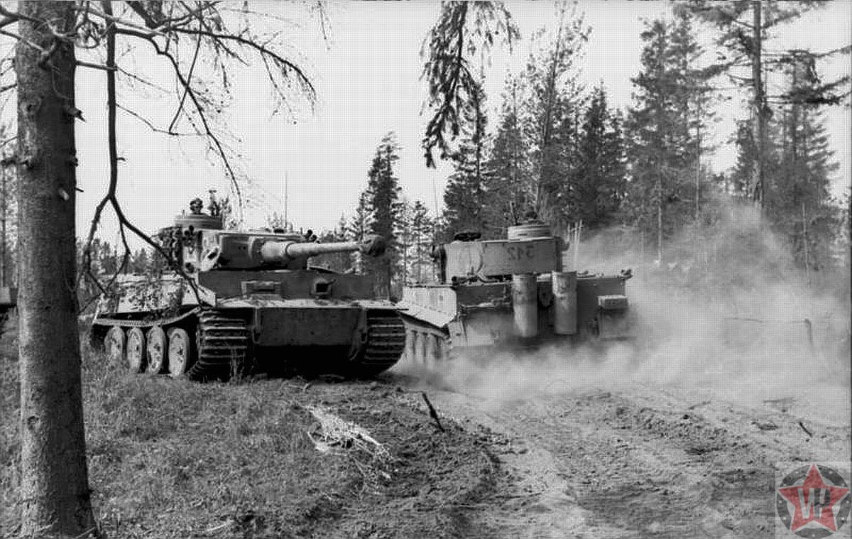 Два танка «Тигр» танкового батальона Вермахта
