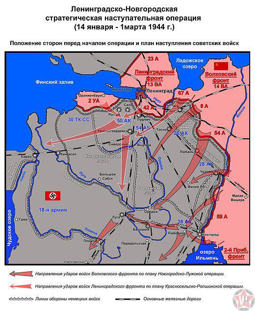 Ленинградско-Новгородская стратегическая операция