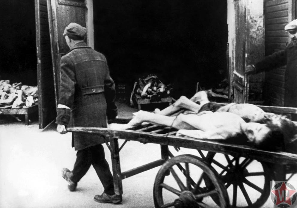 Погибшие тела евреев на похоронной телеге в гетто в Варшаве в 1943 году