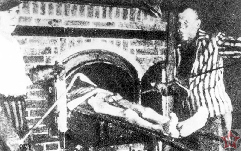 Зондеркоманда сжигает трупы в крематории