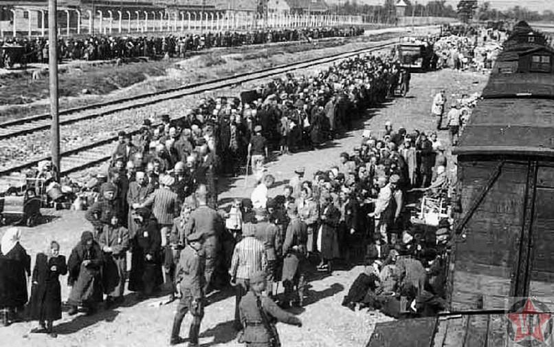 Распределение узников в Освенциме