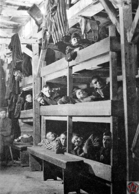 Освобожденные узники концлагеря Бухенвальд на нарах в бараке